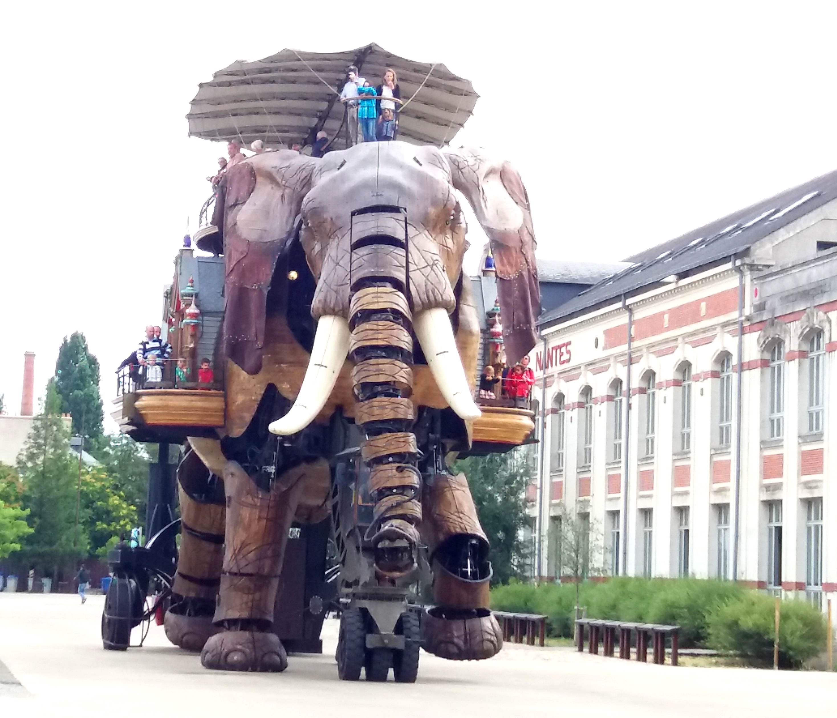 elephant-mecanique-a-nantes
