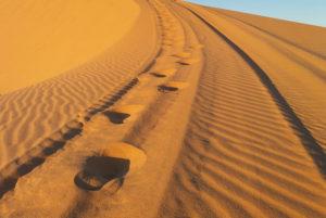 dunes de Mui Ne sable blanc