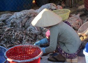 marché aux poissons Mui Ne