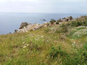 Jersey sentier côtier