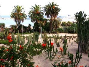 Jardin de cactus Mossèn Costa Llobera Barcelone
