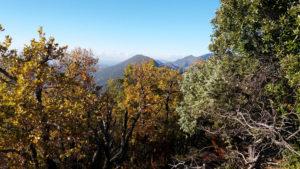 Randonnée de Nyons aux Barons Perchés, Provence, forêt, montagne