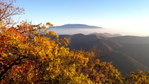 Randonnée Nyons Garde Grosse, Provence, Sommet Garde Grosse, Mont-Ventoux, provence en automne