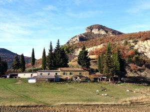Randonnée Saint Féréol Trente Pas, Provence, paysage, ferme, chevrerie