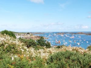 Chausey, paysage côtier